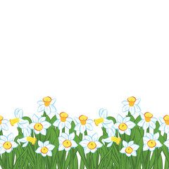 Postcard of green grass with small blue narcissus flowers isolated on white. Vector illustration
