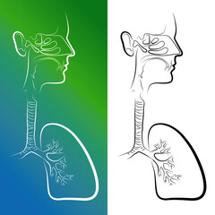Sketch of Respiratory System Organs. Vector Illustration