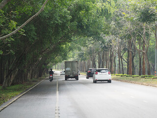 Many cars and motorcycle on Road with the trees