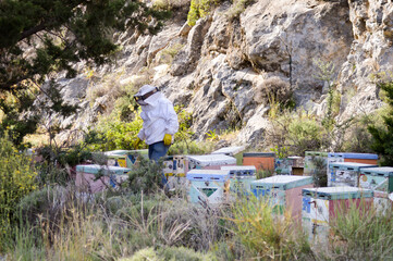 Cretan beekeeper among these hives