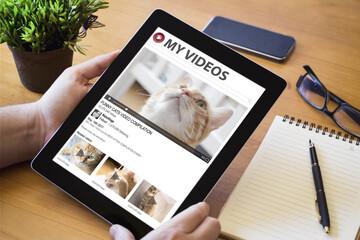 desktop tablet cats video streaming
