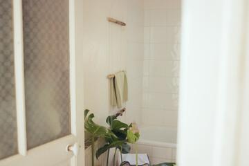 salle de bain avec plante monstera, porte serviette en bois, diy, relax, zenitude, temps pour soi
