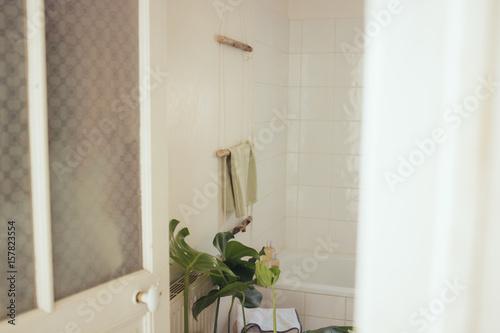 Salle de bain avec plante monstera porte serviette en - Plante pour salle de bain sombre ...