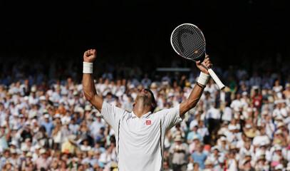 Men's Singles - Serbia's Novak Djokovic celebrates after winning his semi final match