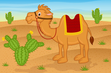 camel in desert  - vector illustration, eps