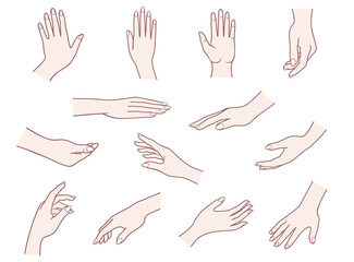 Hand collection. Vector illustrations pack of woman hands in various gestures.