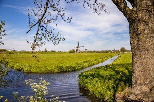 Holland Kinderdijk Windmills Hiking Trail Landscape  scenery