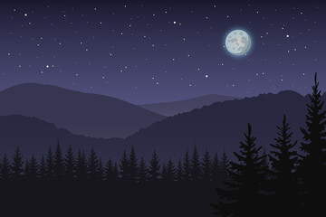 Forest. Night. Vector.