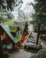 Elevated view of wooden log cabin in forest