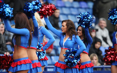Crystal Palace v Reading npower Football League Championship
