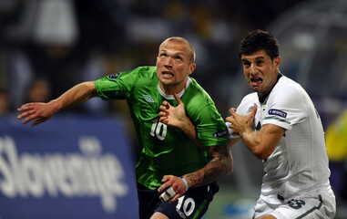Slovenia v Northern Ireland UEFA Euro 2012 Qualifying Group C
