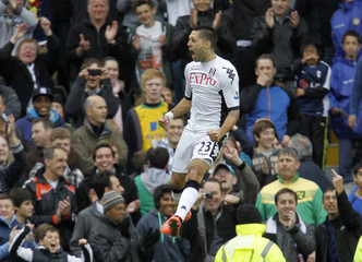 Fulham v Norwich City Barclays Premier League