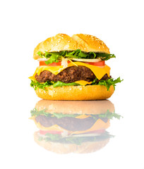 Cheeseburger Sandwich Isolated on White Background