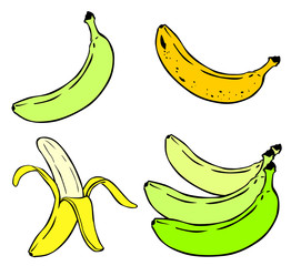 Cartoon Illustration of Banana Fruit Food Object vector eps 10