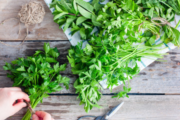 Female hands gather a bunch of fresh stems with parsley leaves on a wooden table, fragrant herbs, a culinary concept, a top view
