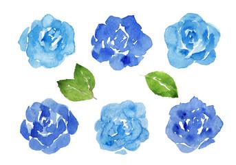 青いバラ 水彩イラスト