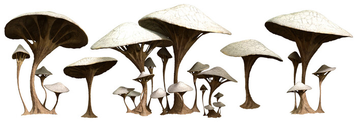Alien mushrooms