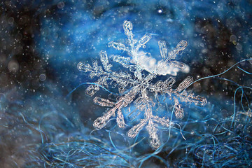 Natural snowflake blue background