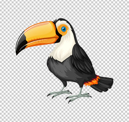 Cute toucan bird on transparent background