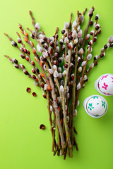 Pussy willow branch and Easter eggs