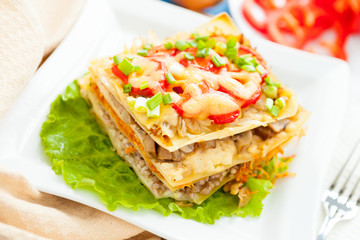 Freshly baked homemade lasagna with vegetables and cheese
