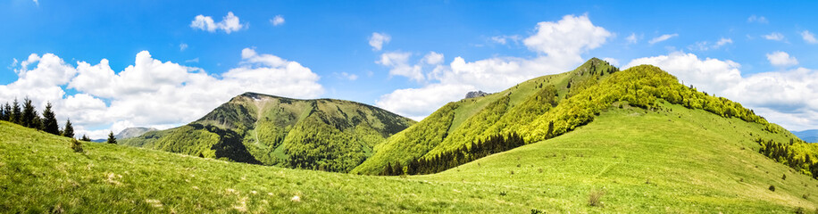 Poster Heuvel Panorama from sunny spring Little Fatra hills - Slovakia