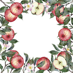Watercolor square frame of apples, apple branches, leaves and flowers isolated on white background. Illustration for design wedding invitations, greeting cards, postcards with space for your text