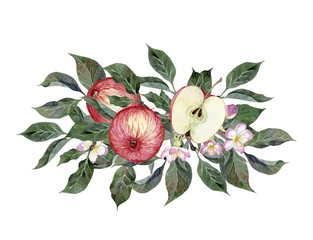 Watercolor hand painted bouquet with apples, apple branches, leaves and flowers. Illustration for cards, wedding invitation, posters, greeting design isolated on white background.