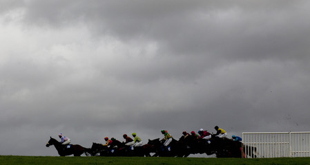 Under a stormy sky, runners take an early hurdle during the 13.15 Blackmore Building Contractors Handicap Hurdle