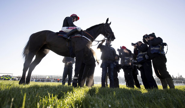 Jockey Barry Geraghty and Sprinter Sacre are photographed after a schooling session at Newbury Racecourse. The horse who has not seen on a racecourse since being pulled up with an irregular heartbeat in the Desert Orchid Chase at Kempton last Christmas