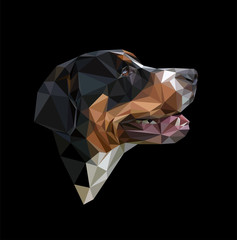 Low polygonal portrait of the Greater Swiss Mountain Dog