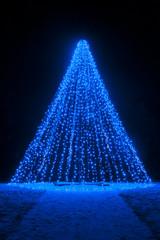 Blue Christmas Tree at Night