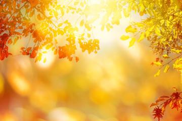leuchtender Herbsthintergrund