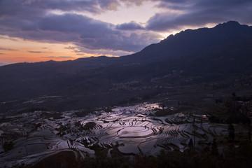 Rice Paddy Terraces, Yuanyang, China