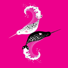 Vector graphics of narwhals