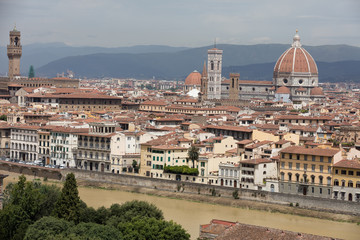 Landscape of Florence from roots, Italy