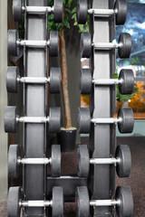 Interior of gymnasium. Sport equipment.