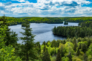 Wilderness Lake Surrounded by Forest, Track and Tower Trail view over Cache Lake, Algonquin Park, Ontario Canada