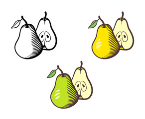 Vector hand drawn illustration of pear. Whole fruit with stem and leaf and cross section with seeds. Yellow, green and outline version