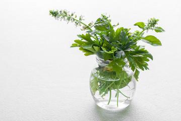 Cerca immagini erbe aromatiche for Erbe aromatiche in vaso