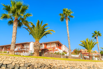 Palm trees and traditional apartments on blue sky background in Costa Adeje town, Tenerife, Canary Islands, Spain