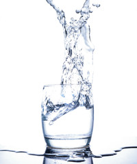 water splash isolate in cup  white background