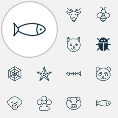 Nature Icons Set. Collection Of Beetle, Cobweb, Starfish And Other Elements. Also Includes Symbols Such As Starfish, Star, Animal.