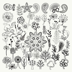 big collection of hand-drawn black and white ornate flowers, plants and leaves