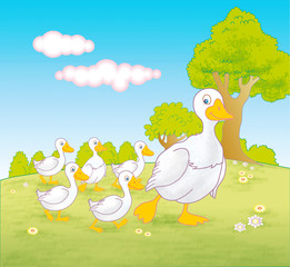 Mother goose and baby geese walking through field - jpg illustration