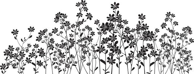 Silhouette wildflowers on white