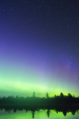 Vertical composition of vibrant northern lights in a sky full of stars