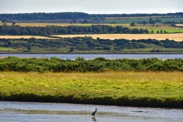 Schottland - Alness Point Wanderweg