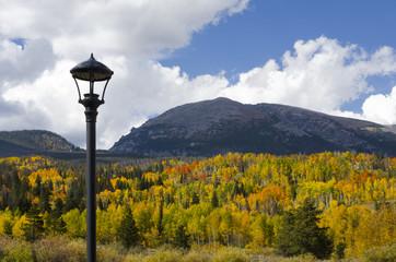 Summit County Autumn Colors on Buffalo Mountain