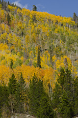 Summit County Autumn Colors